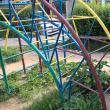 Mizerie și vegetaţie abundentă