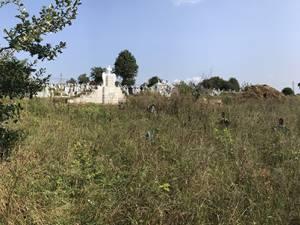 După mărăcinii care acoperă crucile copiilor se văd mormintele îngrijite ale siretenilor