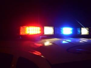 Șoferul unei autoutilitare cu lemn s-a ascuns pe după copaci, încercând să scape de polițiști
