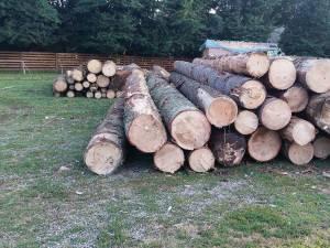 """A """"măsluit"""" GPS-ul pentru a transporta lemn fără avizele necesare"""