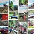 Producătorul român IRUM lansează la Ziua Forestierului o nouă generație de utilaje forestiere