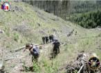 Film al pompierilor cu cea mai grea intervenţie din ultimii ani, la incendiul care a distrus 50 de hectare de pădure