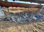 Rezervoare și scaune de mașini din dezmembrări, aruncate pe un drum din apropierea fostei Termica